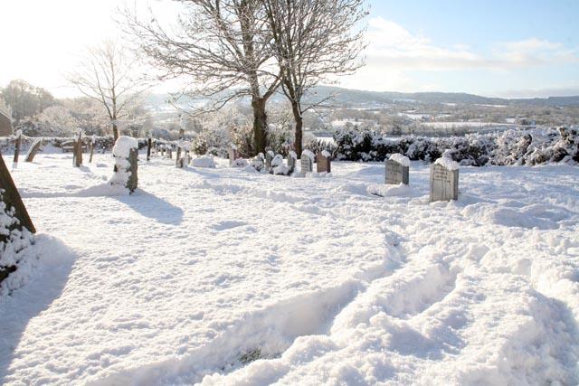 snow_10_1