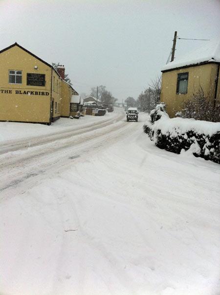 snow_blackbird_a38